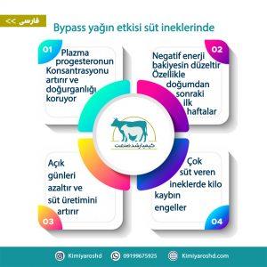 Bypass Yagin etkisi sut ineklerinde